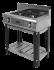 Плита  2-х горелочная Ф2ЖТЛПГ (на подставке) Grill Master