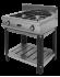 Плита газовая Ф2ПГ/600 (открытый стенд) Grill Master